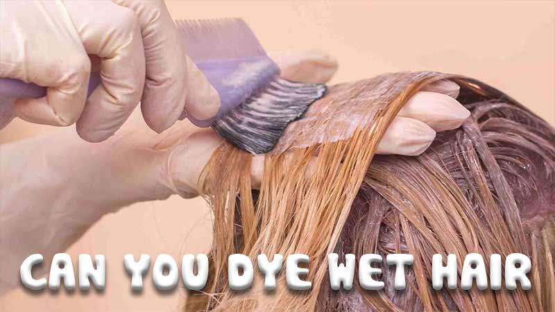 Can You Dye Wet Hair? The Key Tactics In Coloring Hair