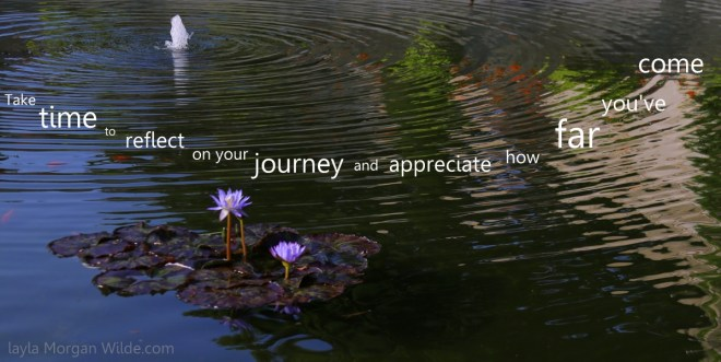 quote reflection-lily pond