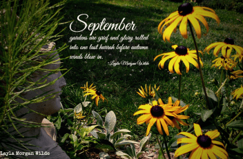 september-quote-flowers-garden muse-002