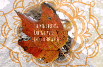 autumn-quote-time-leaf Zen