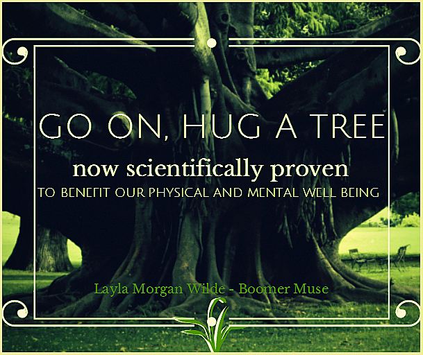 Tree hugging quote