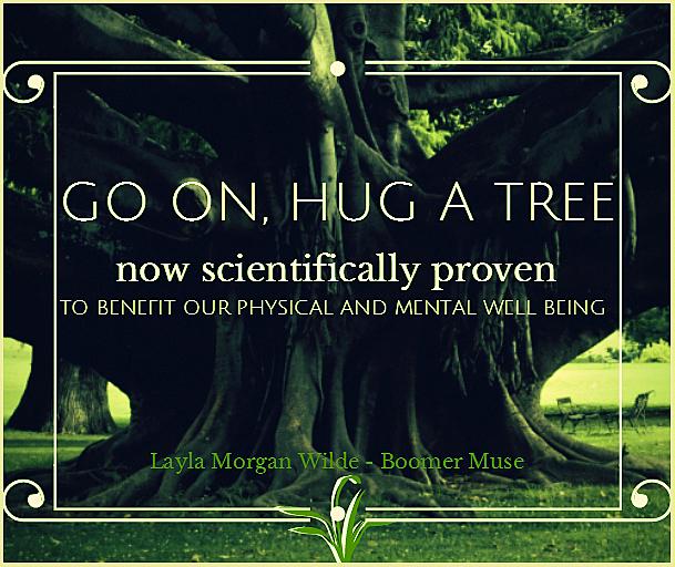Tree hugging quote