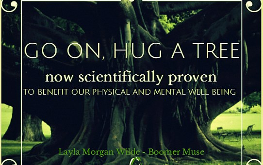 Hugging Trees Proven To Help Stress