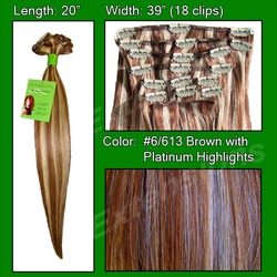 #6/613 Chestnut Brown w/ Platinum Highlights – 20 inch Remi