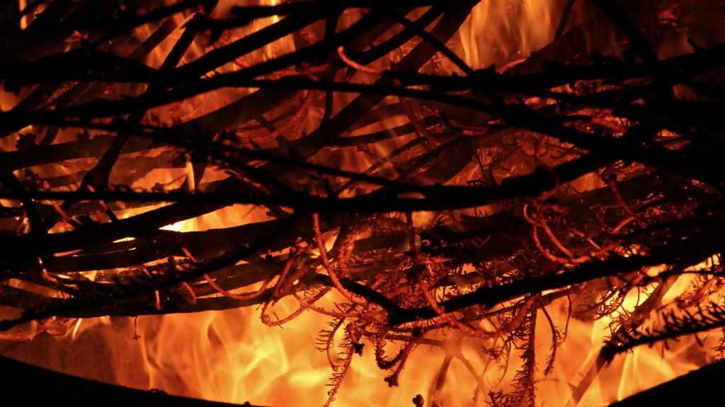 LIT THE CHRISTMAS TREE ON FIRE