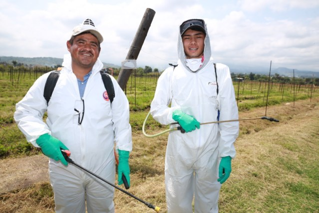 Crea Agricultura Sustentable nueva cultura de trabajo en el campo: Silvano Aureoles