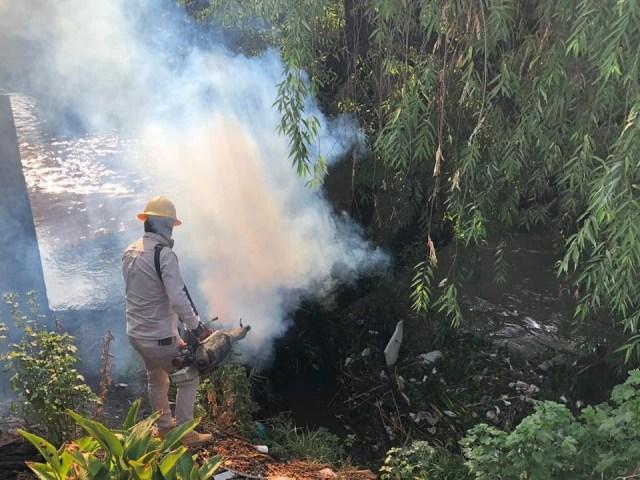 Intensifica SSM acciones contra el dengue en Morelia