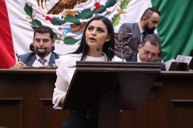 Federación en deuda con las mujeres víctimas de violencia: Araceli Saucedo