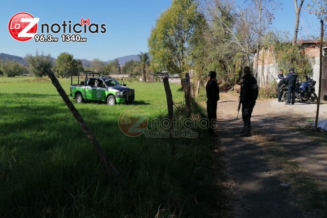 Reporte de tigre en cautiverio en una finca moviliza a Policía en Morelia