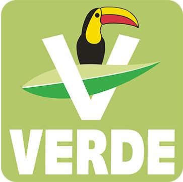Verde, va en alianza con PT en dos espacios, sin acuerdo con Morena