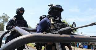Violencia en Michoacán: asesinaron a ocho personas en narcocampamento de Cotija