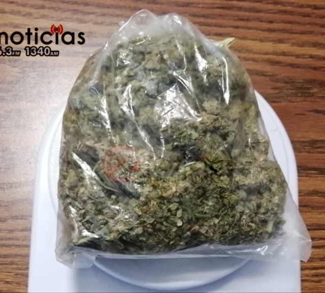 Detiene SSP a uno en posesión de marihuana