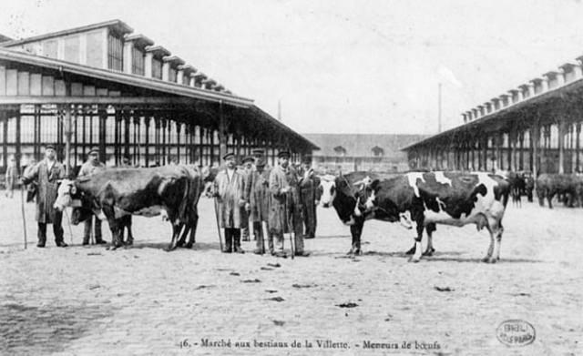 paris la villette marché aux bestiaux