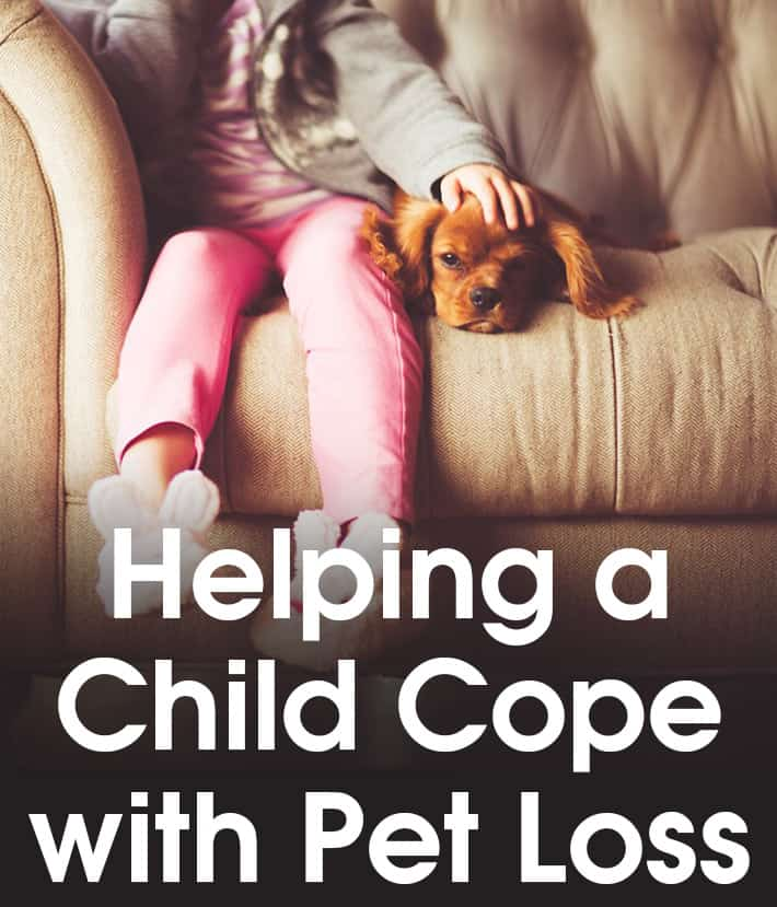 Helping a Child Cope With Pet Loss
