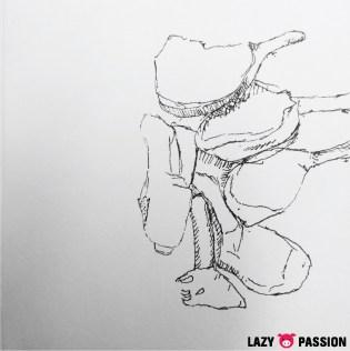 sketch lamb 1