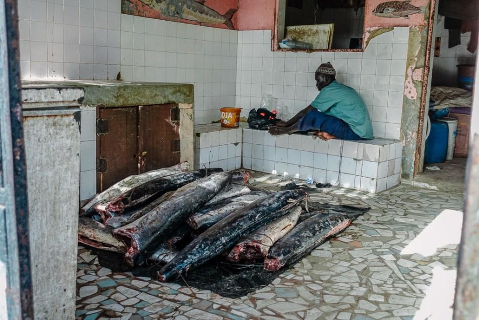 Senegal - Targ rybny w M'bour - Port rybacki w M'bour