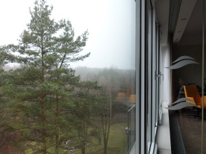 Hotel Narvil - widok z okna
