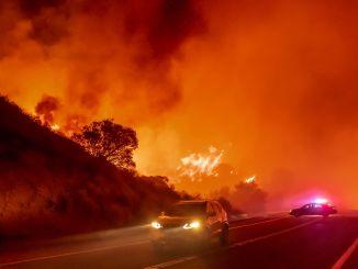 هل يمكنك التفوق على حريق غابة؟