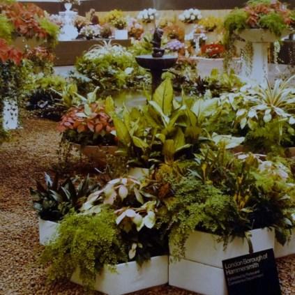 3 Plant Arrangment