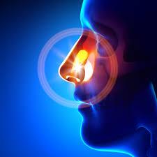 Preditores morfológicos Craniofaciais do aparelho bucal dos resultados em pacientes com apneia obstrutiva do sono
