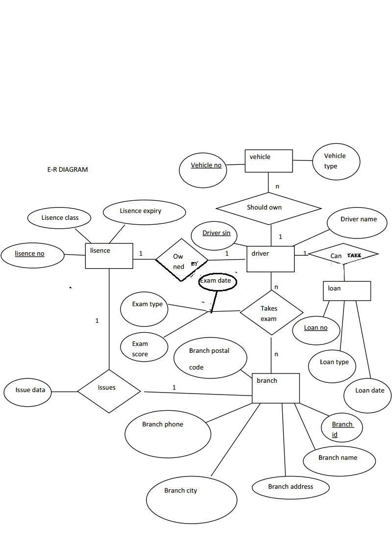 SIMPLE E_-R DIAGRAM FOR MOTOR VEHICLE LISENCE BRANCH
