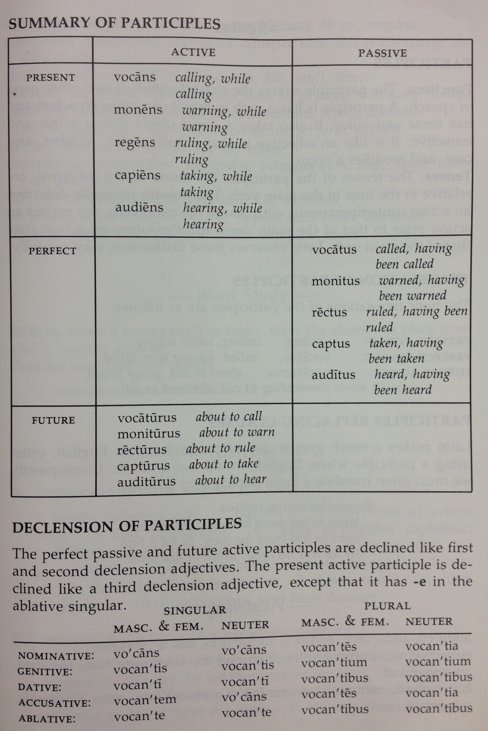 Participles Latin