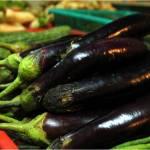 BT Eggplants, anyone?