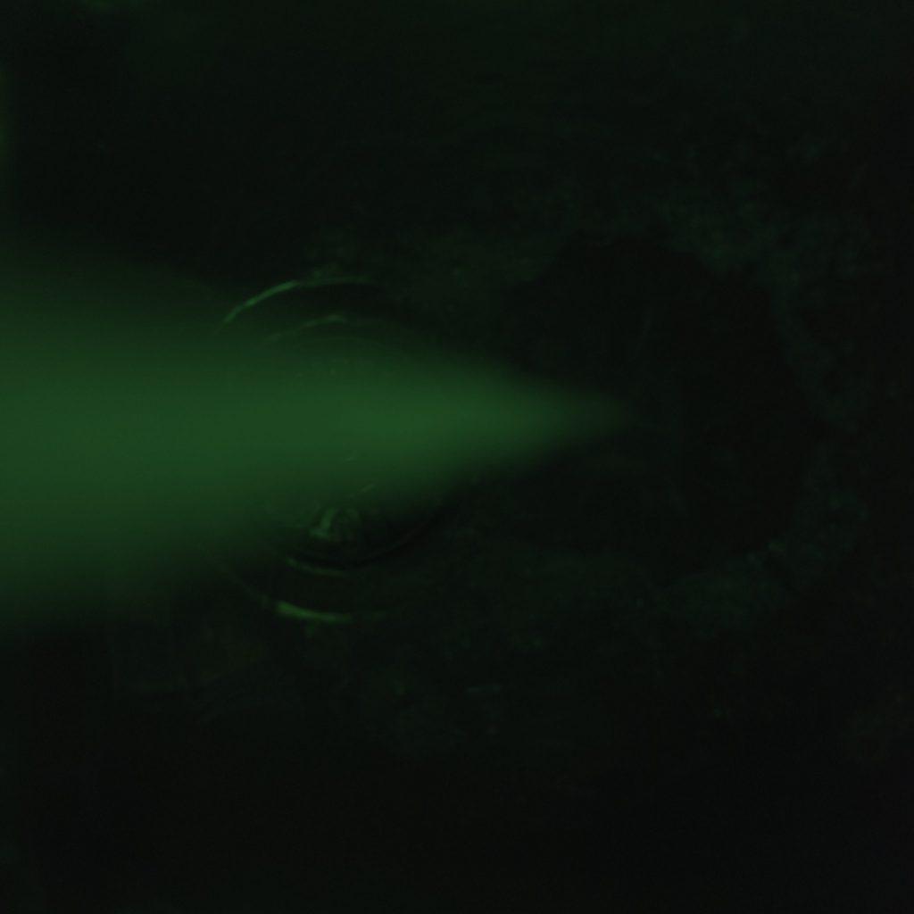 Falling tap water in green