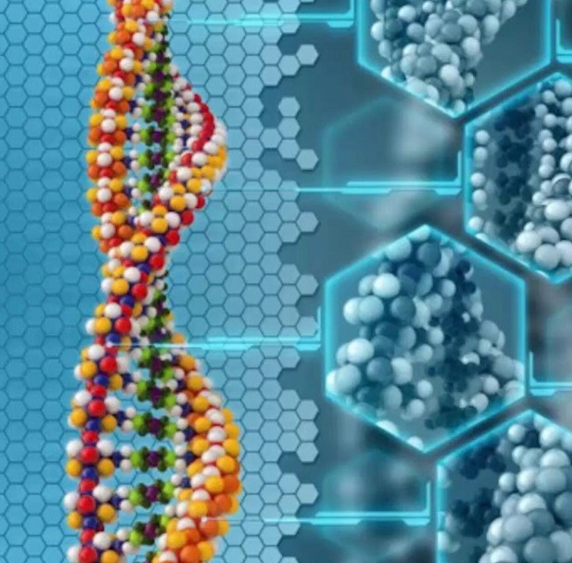 DNA – Surprisingly Easy To Reprogram!