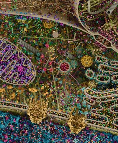 Cellular Landscape