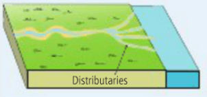 diagram of a delta landform nhp shunt trip wiring river leaving certificate geography picture