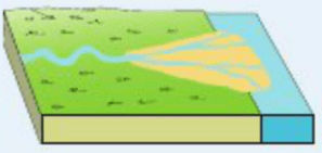 diagram of a delta landform building wiring river leaving certificate geography 3 birds foot deposited material divides the into smaller distributaries 4 lacustrine formed when flows lake