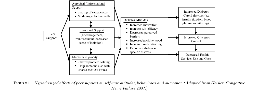 Peer Support to Improve Diabetes Self-Management