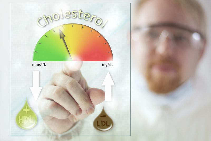 colesterolul bun si colesterolul rau, LDL si HDL, trigliceridele si profilul lipidic