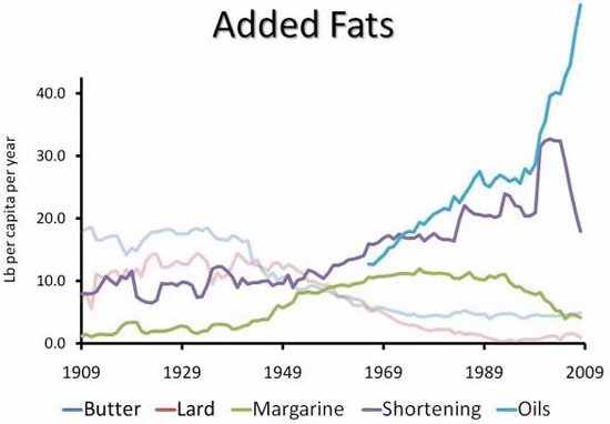consumul de grasimi in usa