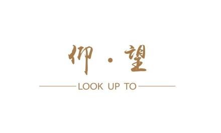 仰望 LOOK UP TO