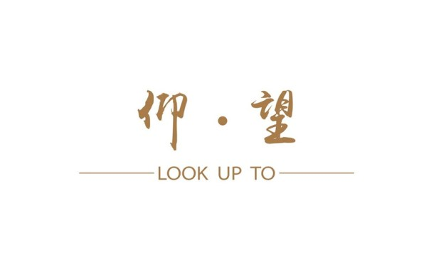 仰望 LOOK UP TO