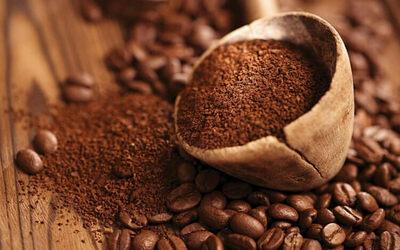 कॉफी पाउडर का खाद में प्रयोग