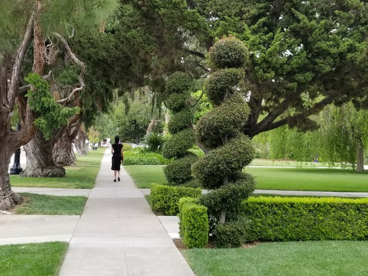 Ancient trees and topiaries