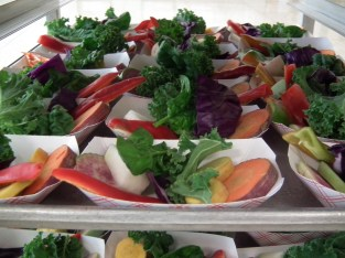The vegetable assortment that was donated by Willowsford Farm for the taste party.