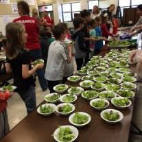 many-salad-bowls-1050-at-seldens