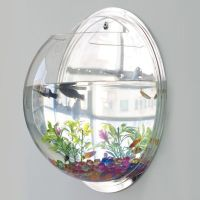 Wall Mounted Fish Tank Acrylic Bowl - Life Changing Products