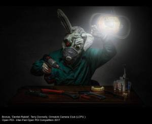 Dentist Rabbit, by Terry Donnelly