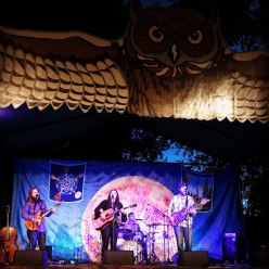 The Two Tracks on stage with Owls