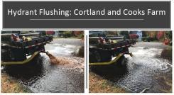 Flushing 1