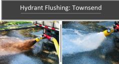 Flushing 6