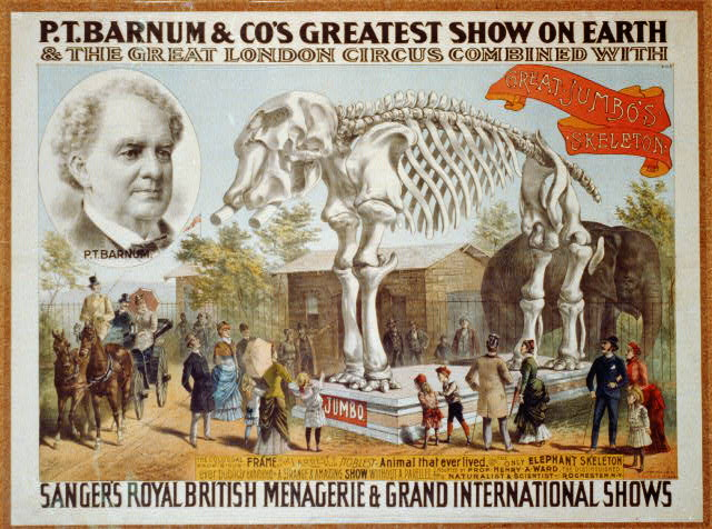 P.T. Barnum & Co's Greatest Show on Earth and The Great London Circus combined with Sanger's Royal British Menagerie ... Great Jumbo's Skeleton