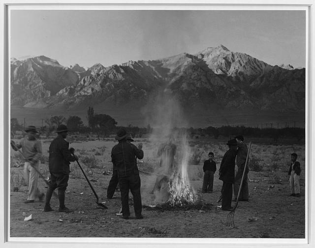 Burning leaves, autumn dawn, Manzanar Relocation Center, California