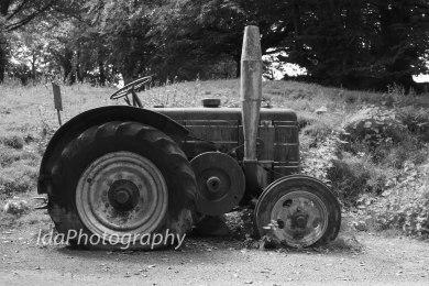 Dartmoor-2255