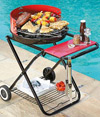 Terranto Charcoal Barbecue